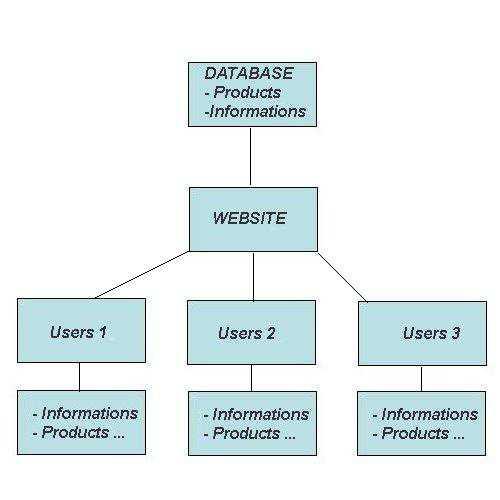 Database Import
